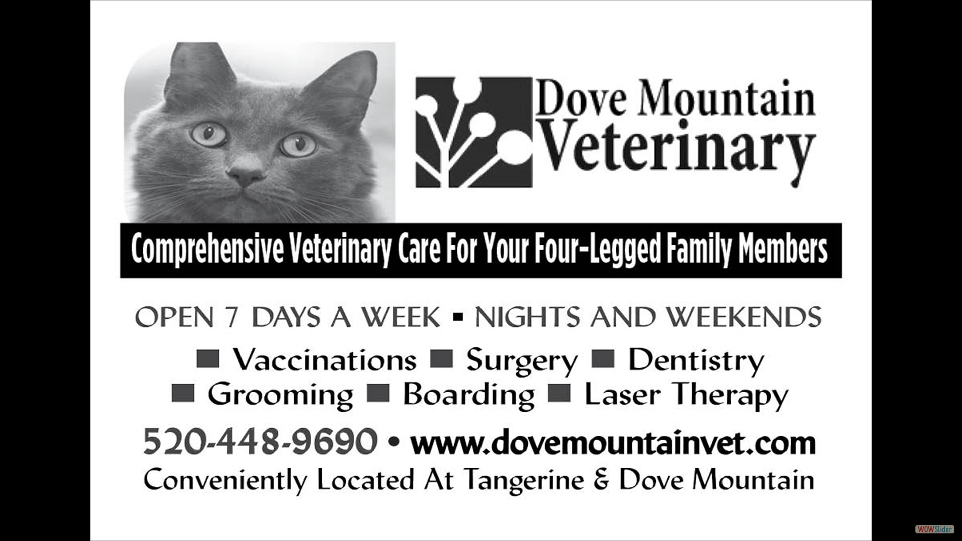 Dove Mountain Vet